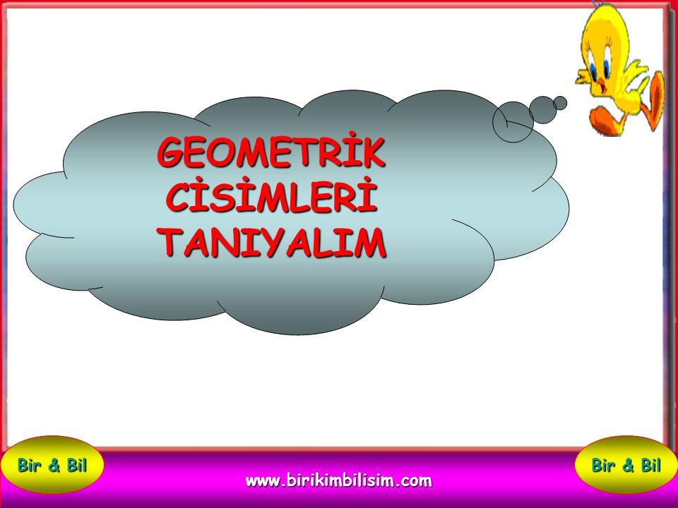 GEOMETRİK CİSİMLERİ TANIYALIM www.birikimbilisim.com Bir & Bil