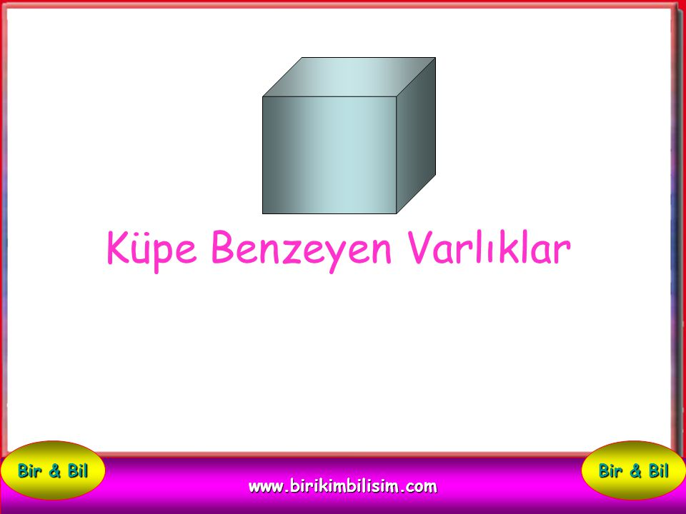 Küpe Benzeyen Varlıklar www.birikimbilisim.com Bir & Bil
