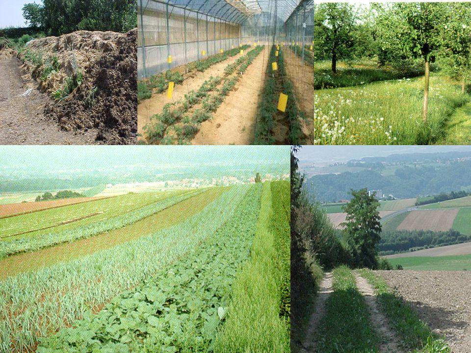 13 Organik tarımda,  Sentetik zirai ilaçların  Sentetik gübrelerin  Tüm sentetik koruyucuların  Genetik değişime uğratılmış organizmaların (GDO)  Işınlama yöntemlerinin kullanımı yasaklanmıştır.