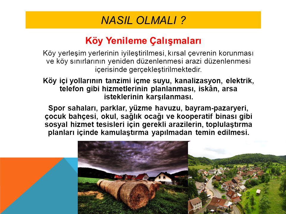 NASIL OLMALI .Köy yenilemesi için özellikle aşağıdaki planlamalar ve önlemler önemlidir.