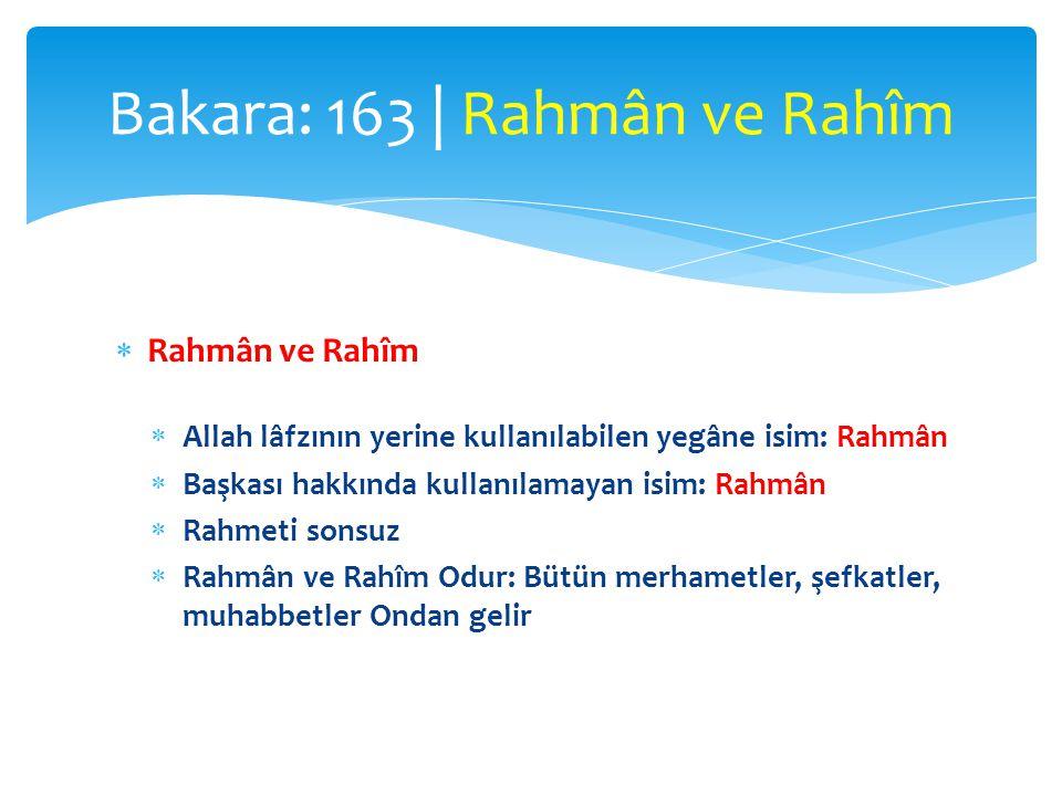  Ulûhiyetin Allah'a mahsus olduğunu bildiren ifadeden sonra başka isimler yerine bu iki ismin kullanılması:  Mahlûkatına karşı muamelesinde esas olan rahmettir  Besmelede ve Fatiha'nın başında olduğu gibi  Kullardan da aynı şey beklenir Bakara: 163 | Rahmân ve Rahîm