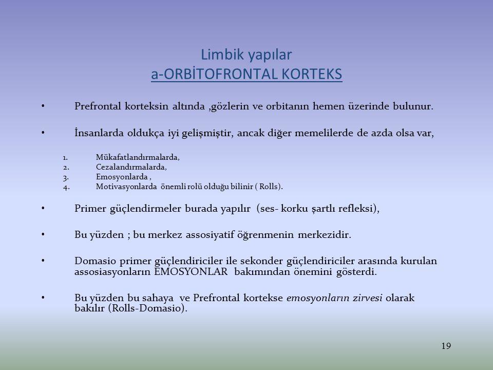 Orbitofrontal korteks nöronları Bu nöronlar karşılaşılan uyaranın Hedonik –Affektif ödüllendirme durumlarına karşı hassastır ve böyle durumlarda orbitofrontal korteks nöronlarından çıkan uyarıların miktarı artar.