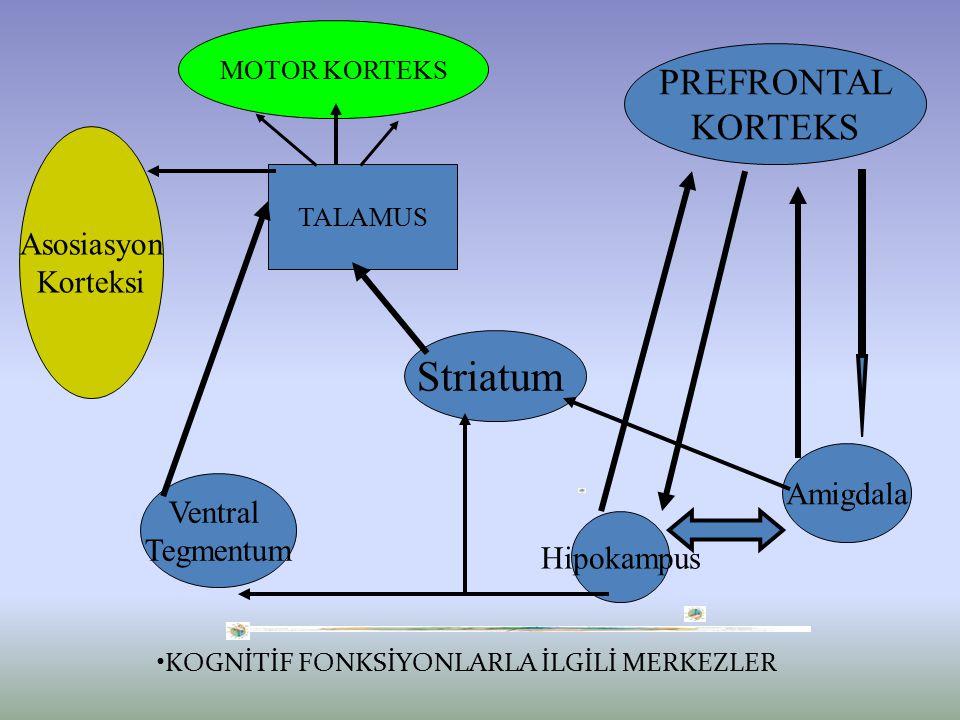Kognitif fonksiyonların tanımı- Psikiyatrik hastalıklarda kognitif bozuklukların bulunduğu Kraepelin tarafından bildirilmiş ve ilk episod psikoz durumlarında ortaya çıkan tabloya demans Preacox adı verilmiştir.