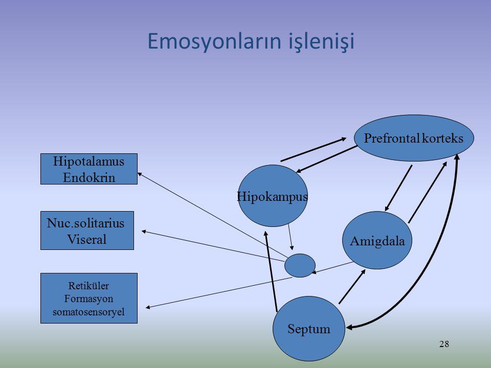 Amigdala lezyonları Bilateral amigdala lezyonlarının olduğu durumlarda yüz ifadelerinin emosyonel tonlarının ( özelikle korkulu) hatırlanması bozulur ( Adolphs).