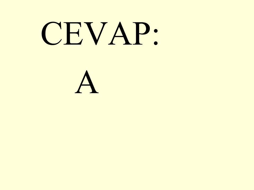 22.Aşağıdaki cümlelerin hangisinde kesme işareti yanlış kullanılmıştır.