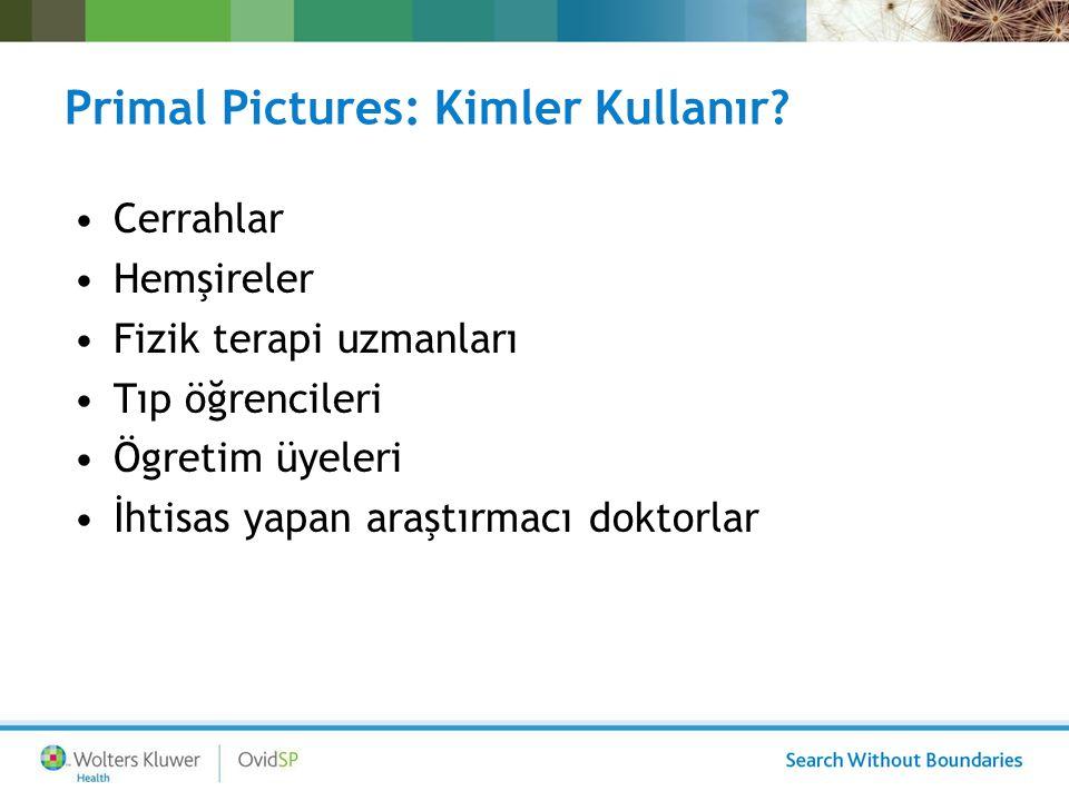 Primal Pictures: Kim Kullanır.