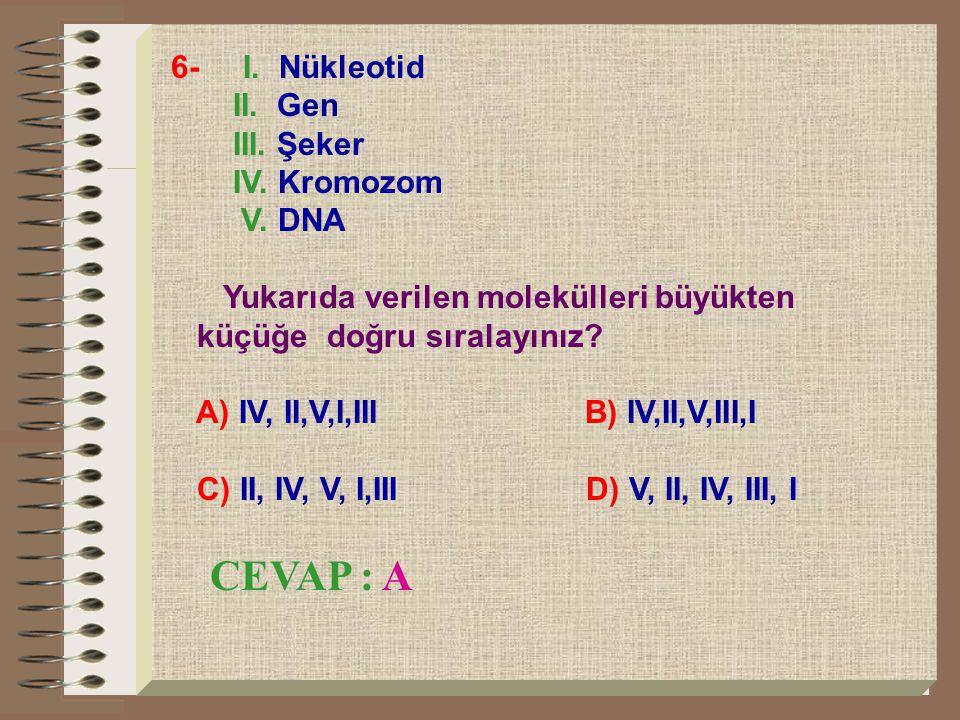 7- SAG TST AGT şeklindeki bir DNA zincirinin karşı zinciri aşağıdakilerden hangisi gibi olur.