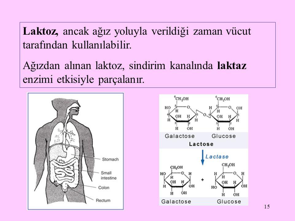 16 Laktaz noksanlığında, bağırsaklarda sindirilip emilemeyen laktoz, bakteriyel fermantasyon ile, asetik asit, laktik asit, propiyonik asit gibi kısa zincirli metabolitlere ve H 2, CO 2, CH 4 gibi gazlara çevrilir; ayrıca laktoz ve laktik asidin oluşturduğu ozmotik etki ile diyare (ishal) ortaya çıkar.