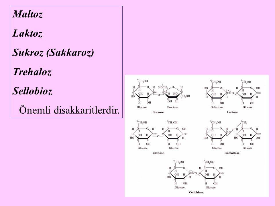 10 Maltoz (Malt şekeri ) Maltoz, iki glukoz molekülünün Glc(  1  4)Glc biçiminde kondensasyonu ile oluşmuş molekül yapısına sahip disakkarittir.