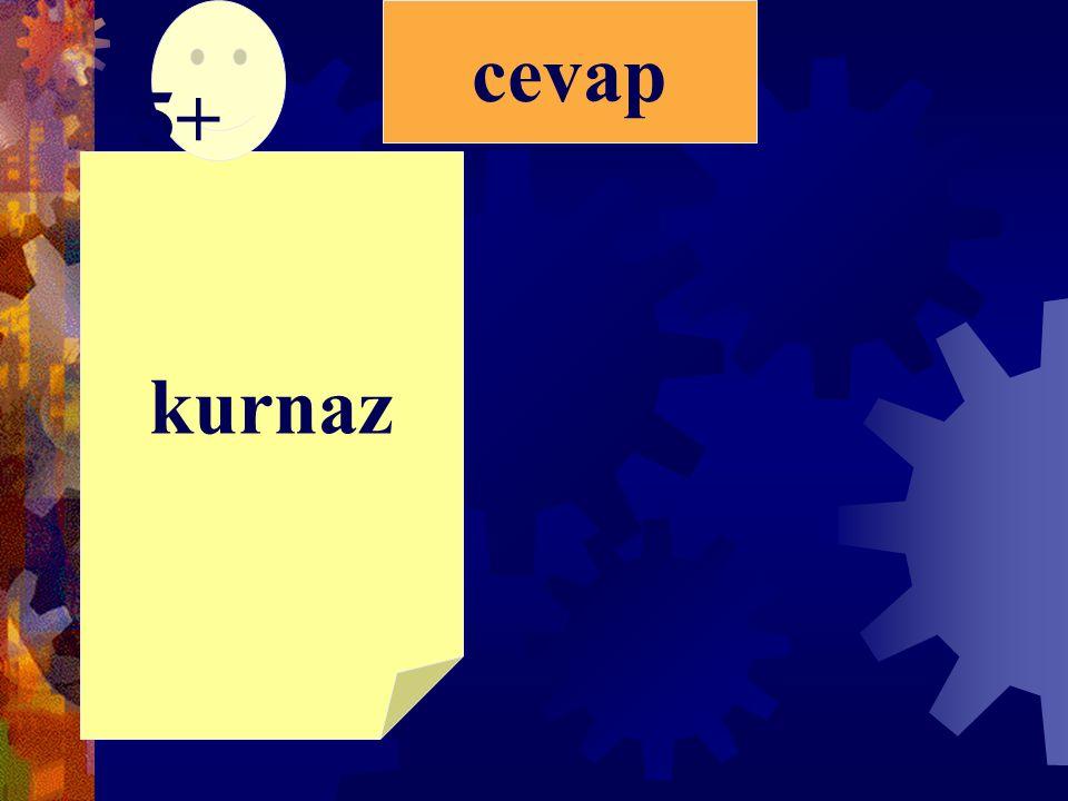 A)Ha-nım-eliB)Ha-nım-e-li C)Ha-nı-me-liD)Hanım-eli 4)Aşağıdaki kelimelerden hangisi hecelerine doğru bölünmüştür?