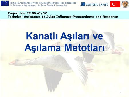 Technical Assistance to Avian Influenza Preparedness and Response An EU-funded project managed by the Central Finance & Contracts Unit Project No. TR 06.AI/SV.