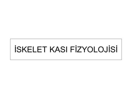İSKELET KASI FİZYOLOJİSİ. Downloaded from: StudentConsult (on 29 March 2007 08:21 AM) © 2005 Elsevier İskelet kasının kas kitlesinden moleküler düzeye.