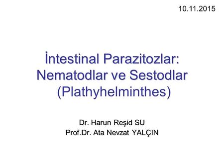 İntestinal Parazitozlar: Nematodlar ve Sestodlar (Plathyhelminthes)