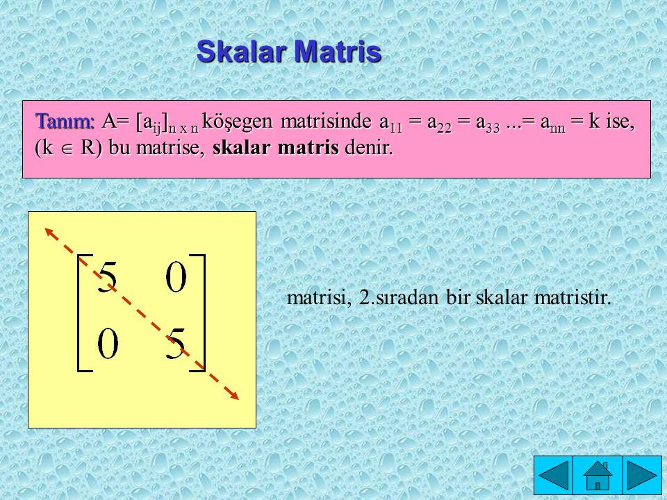 Skalar Matris matrisi, 2.sıradan bir skalar matristir.