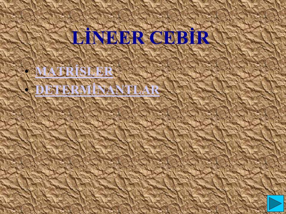 LİNEER CEBİR MATRİSLER DETERMİNANTLAR