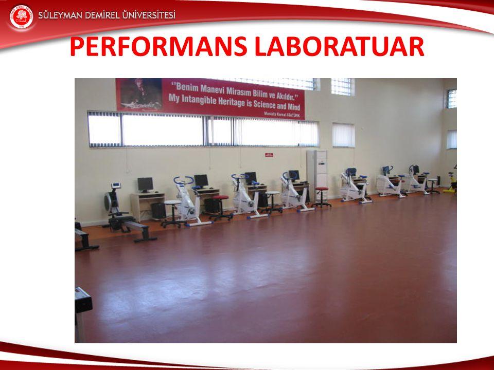 Performans Laboratuar