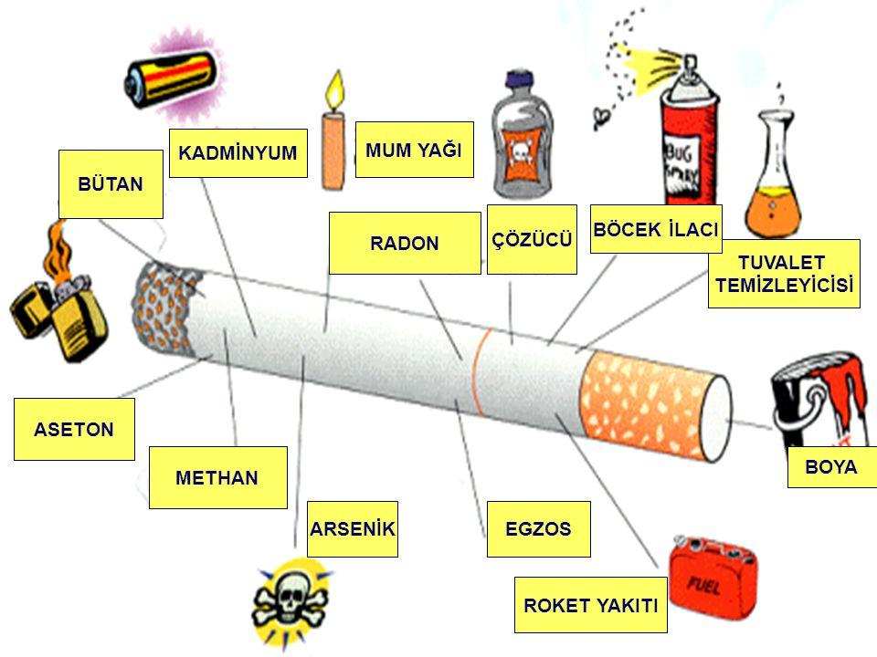 NİKOTİN Kişiyi sigaraya bağımlı hale getiren madde ise nikotin dir.