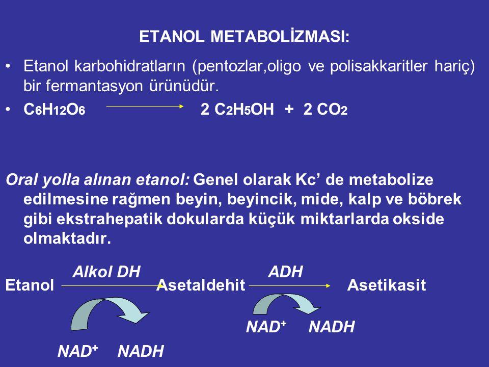 ETANOL METABOLİZMASI: Etanol karbohidratların (pentozlar,oligo ve polisakkaritler hariç) bir fermantasyon ürünüdür.
