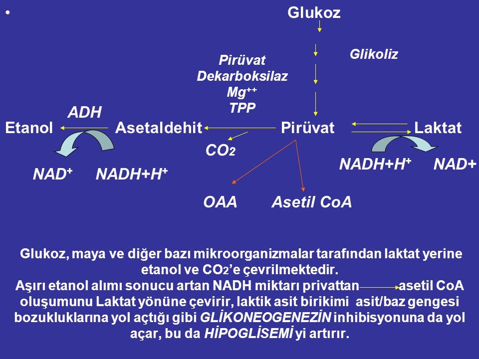 Glukoz, maya ve diğer bazı mikroorganizmalar tarafından laktat yerine etanol ve CO 2 'e çevrilmektedir.