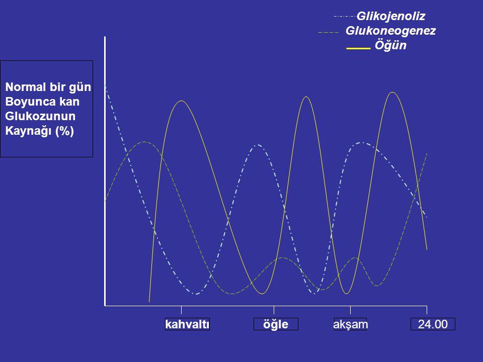 kahvaltıöğleakşam24.00 Normal bir gün Boyunca kan Glukozunun Kaynağı (%) Glikojenoliz Glukoneogenez Öğün