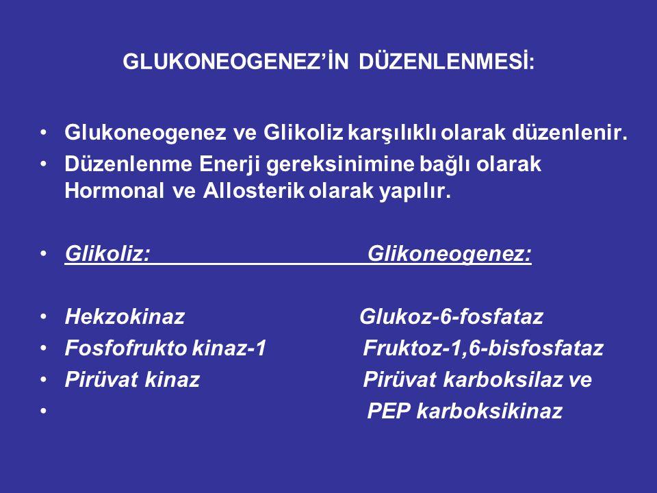 GLUKONEOGENEZ'İN DÜZENLENMESİ: Glukoneogenez ve Glikoliz karşılıklı olarak düzenlenir.