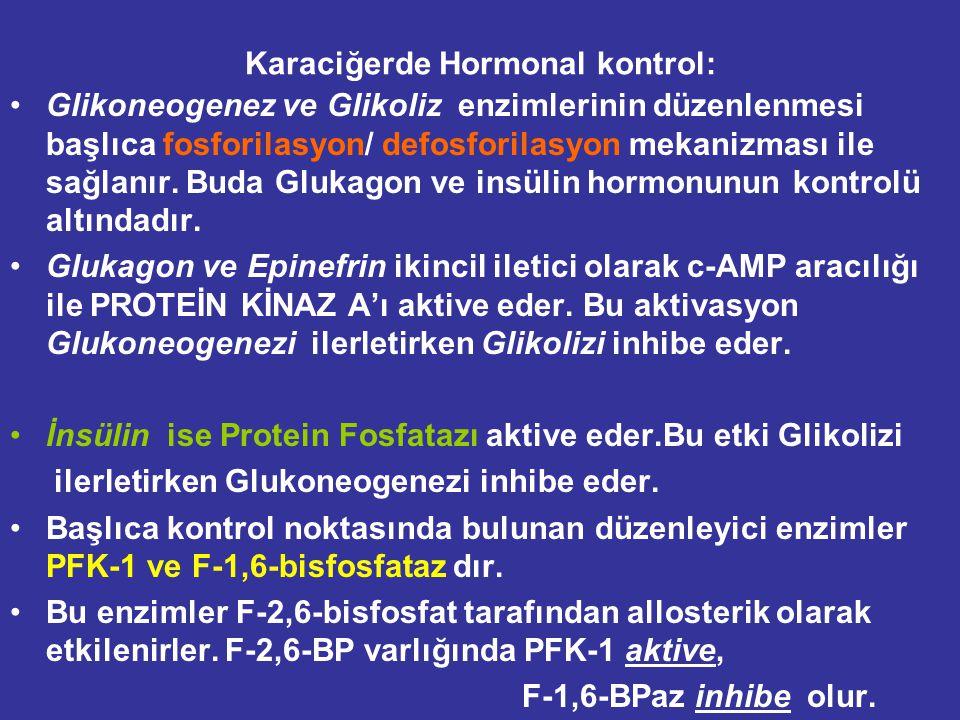 Karaciğerde Hormonal kontrol: Glikoneogenez ve Glikoliz enzimlerinin düzenlenmesi başlıca fosforilasyon/ defosforilasyon mekanizması ile sağlanır.