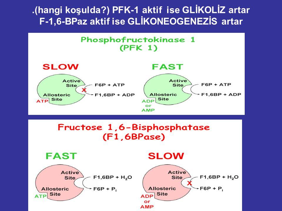 .(hangi koşulda?) PFK-1 aktif ise GLİKOLİZ artar F-1,6-BPaz aktif ise GLİKONEOGENEZİS artar