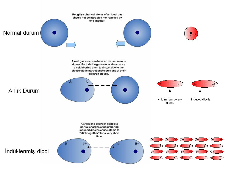 Kalıcı dipol momentler: Sadece polar moleküllerde bulunur ! Dipol-Dipol Etkileşim
