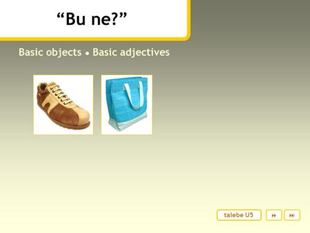"""Bu ne?"" Basic objects ● Basic adjectives  talebe U5."