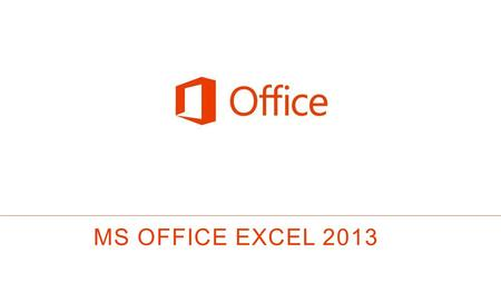 MS OFFICE EXCEL 2013.