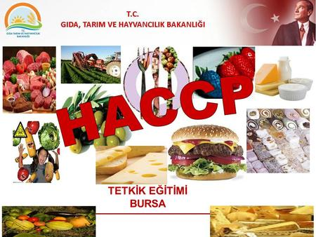 TETKİK EĞİTİMİ BURSA Hazard Analysis and Critical Control Points -HACCP- Tehlike Analizi ve Kritik Kontrol Noktaları.