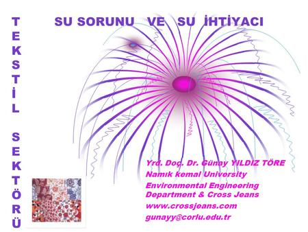 T SU SORUNU VE SU İHTİYACI E K S T İ L S E K T Ö R Ü Yrd. Doç. Dr. Günay YILDIZ TÖRE Namık kemal University Environmental Engineering Department & Cross.