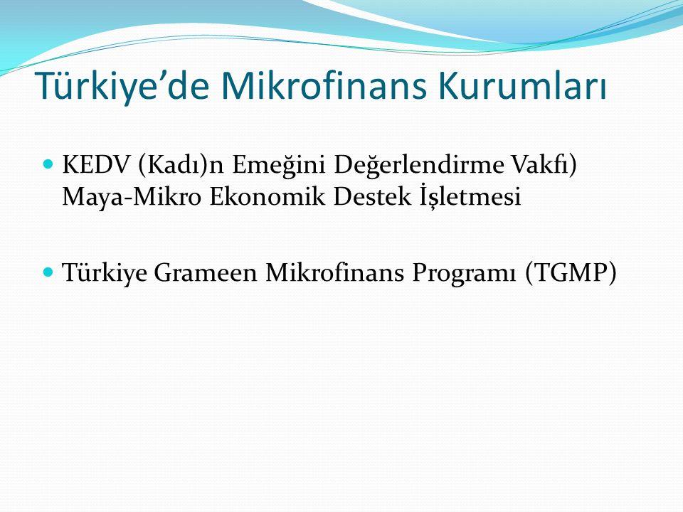 KEDV (Kadın Emeğini Değerlendirme Vakfı) Maya-Mikro Ekonomik Destek İşletmesi 56 Amacı küçük çaplı bir iş yapan ve bu işini geliştirmek isteyen ya da yeni bir iş kurmayı hedefleyen dar gelirli kadınlara sermaye desteği sağlamak olan Maya işletmesi, bugün itibariyle İstanbul, Kocaeli, Sakarya ve Düzce'de kredi vermektedir.