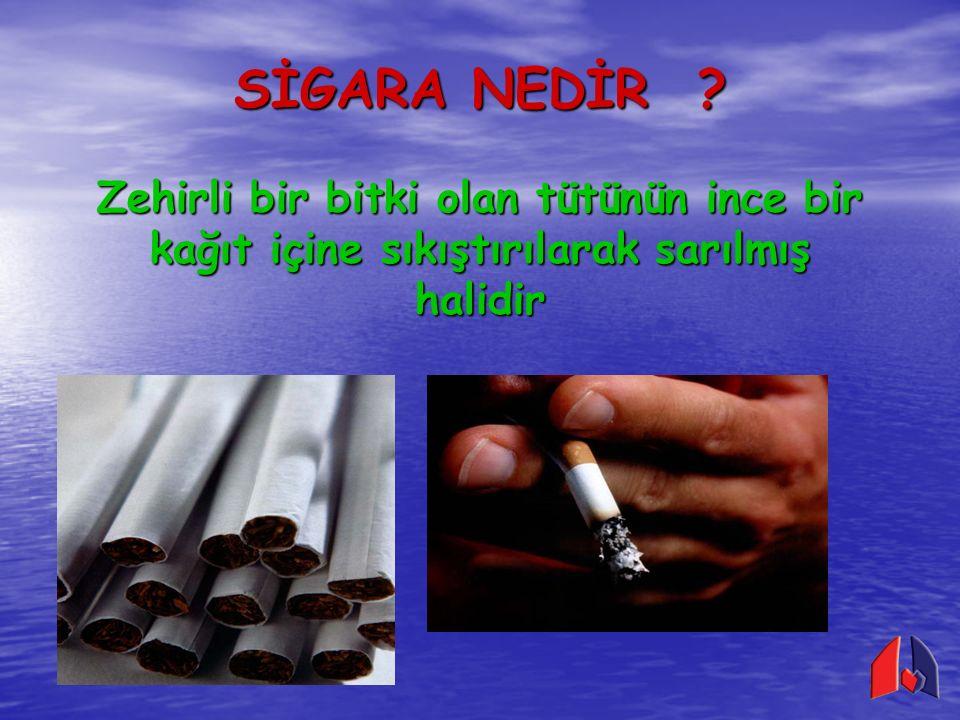 Sigara dumanında vücudumuz için zararlı 4.000'den fazla madde bulunur En tehlikeli maddeler NİKOTİN KARBONMONOKSİT KATRAN Sigara dumanında vücudumuz için zararlı 4.000'den fazla madde bulunur En tehlikeli maddeler NİKOTİN KARBONMONOKSİT KATRAN