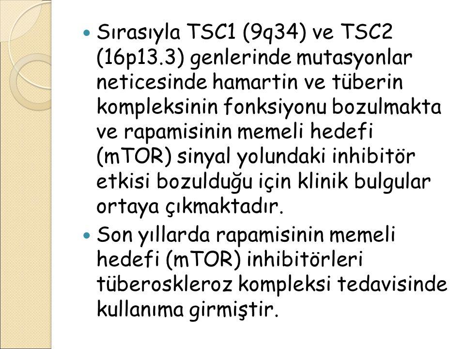 Sırasıyla TSC1 (9q34) ve TSC2 (16p13