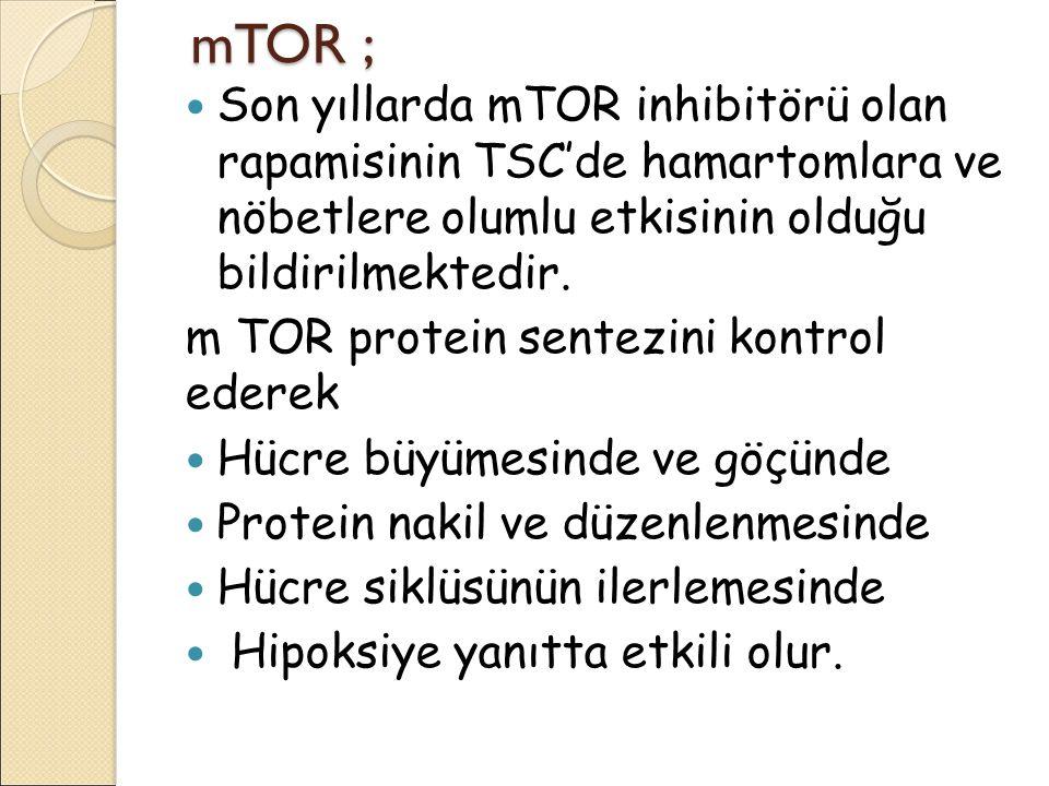 mTOR ; Son yıllarda mTOR inhibitörü olan rapamisinin TSC'de hamartomlara ve nöbetlere olumlu etkisinin olduğu bildirilmektedir.