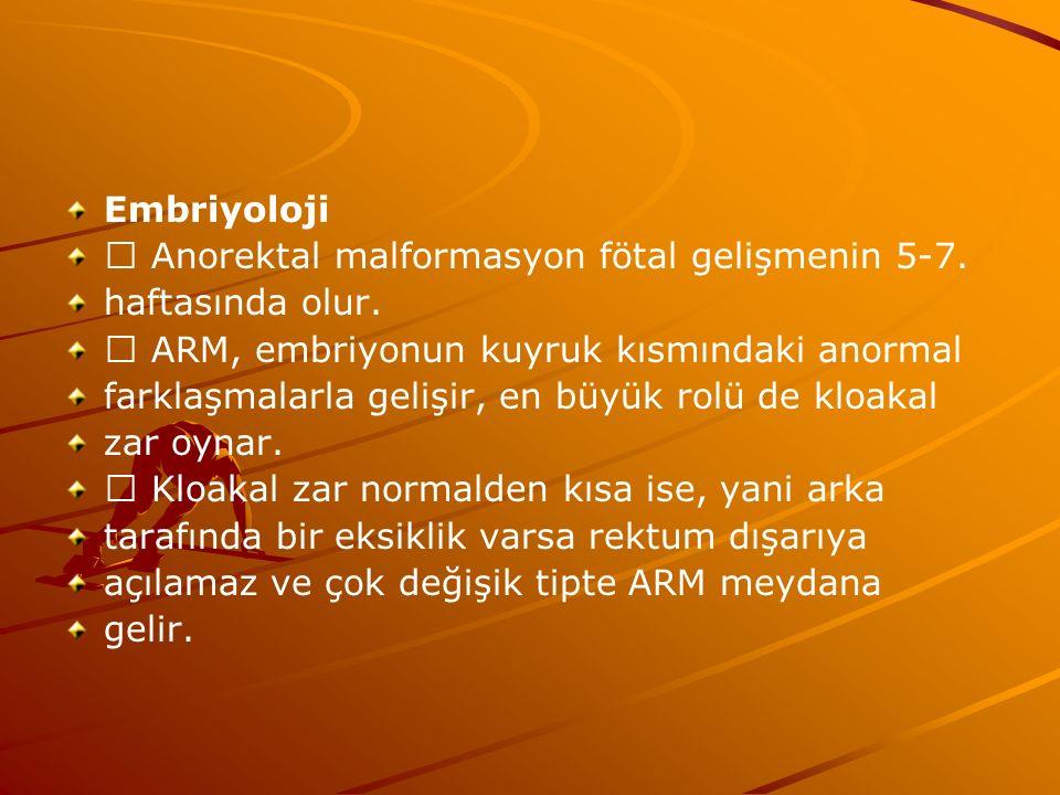 Embriyoloji  Anorektal malformasyon fötal gelişmenin 5-7. haftasında olur.  ARM, embriyonun kuyruk kısmındaki anormal.