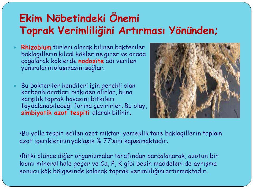 Ekim Nöbetindeki Önemi Toprak Verimliliğini Artırması Yönünden;