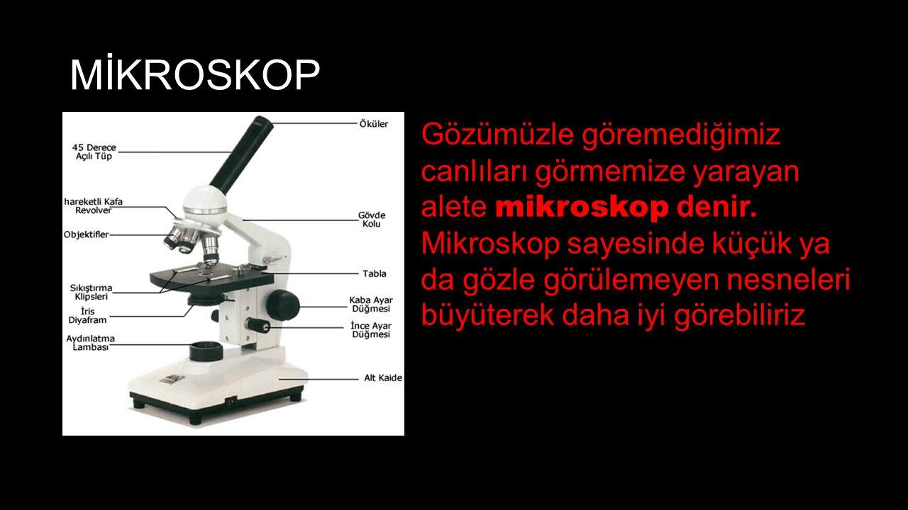 MİKROSKOP Gözümüzle göremediğimiz canlıları görmemize yarayan alete mikroskop denir.