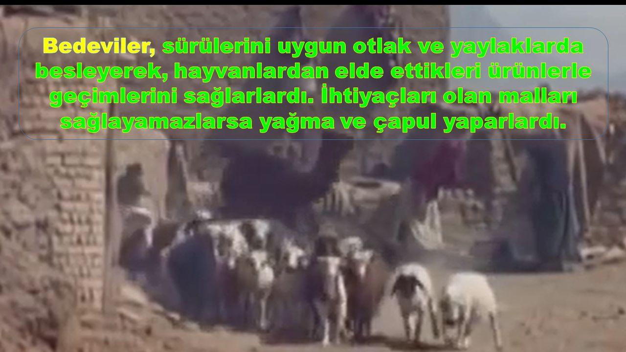 Bedeviler, sürülerini uygun otlak ve yaylaklarda besleyerek, hayvanlardan elde ettikleri ürünlerle geçimlerini sağlarlardı.