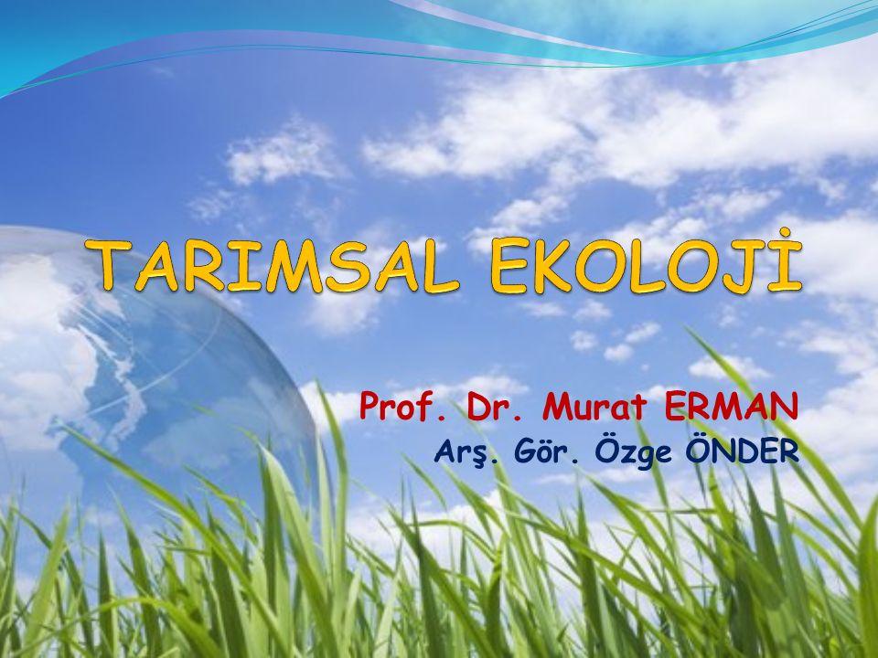 Prof. Dr. Murat ERMAN Arş. Gör. Özge ÖNDER
