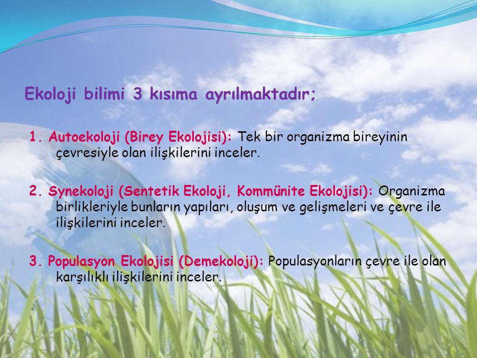 Ekoloji bilimi 3 kısıma ayrılmaktadır;
