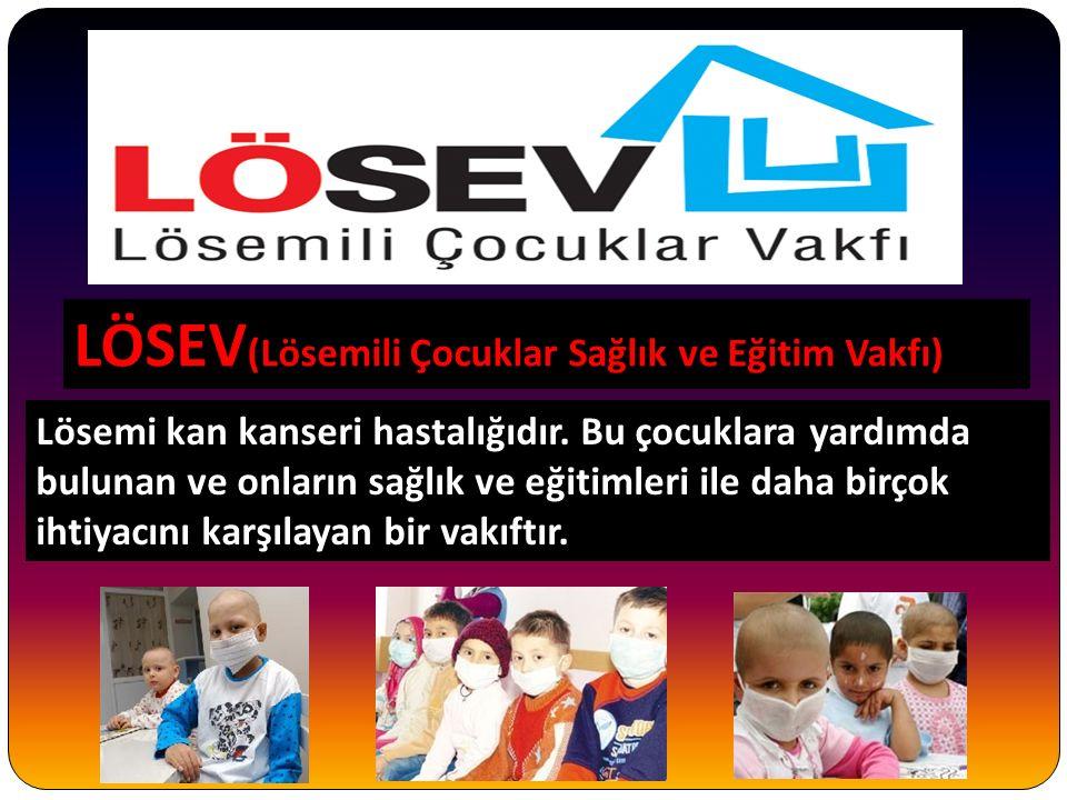 LÖSEV(Lösemili Çocuklar Sağlık ve Eğitim Vakfı)