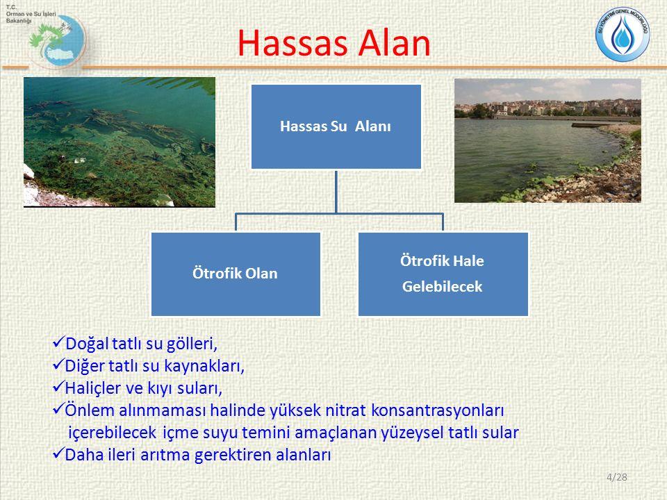 Hassas Alan Doğal tatlı su gölleri, Diğer tatlı su kaynakları,