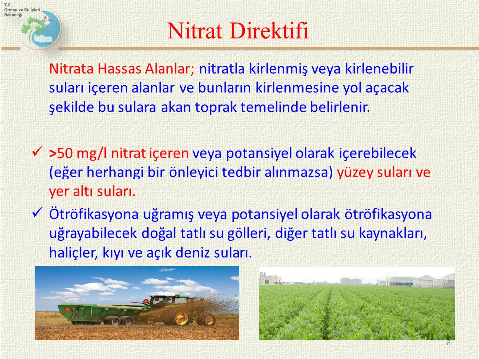 Nitrat Direktifi