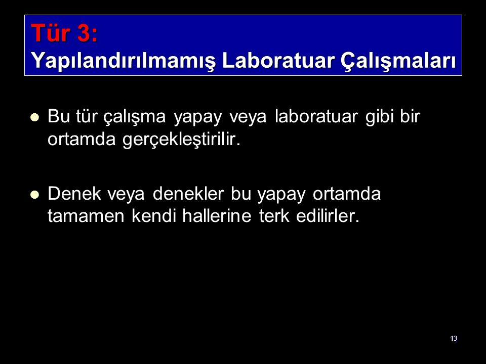 Tür 3: Yapılandırılmamış Laboratuar Çalışmaları