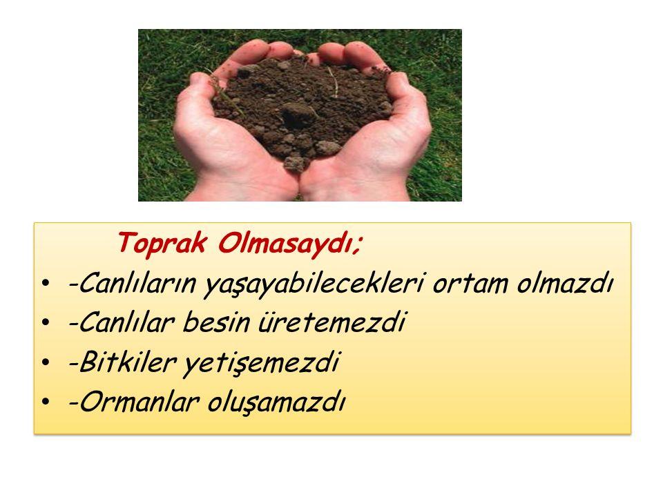 Toprak Olmasaydı; -Canlıların yaşayabilecekleri ortam olmazdı. -Canlılar besin üretemezdi. -Bitkiler yetişemezdi.