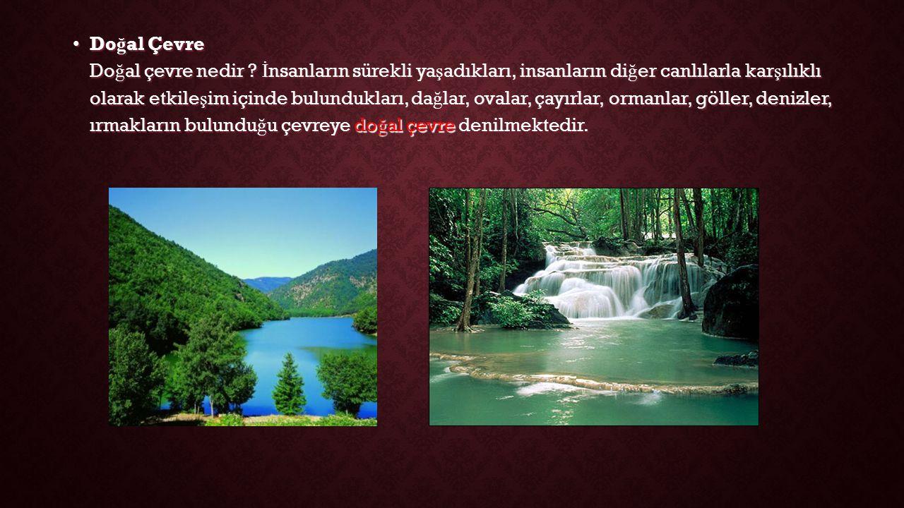 Doğal Çevre Doğal çevre nedir