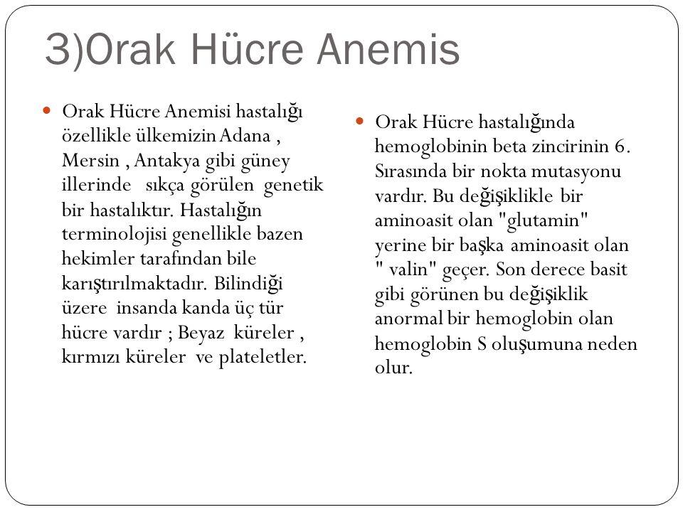 3)Orak Hücre Anemis