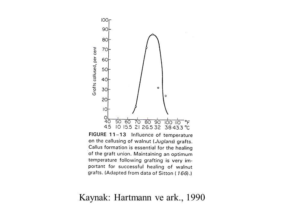 Kaynak: Hartmann ve ark., 1990
